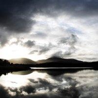Photograph by Fraser McFadzean